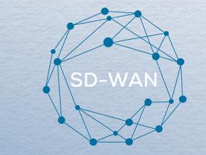 SD-WAN Betriebsmodelle im Vergleich