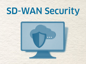 SD-WAN Security-Architekturen