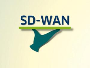 Die 4 besten SD-WAN Anbieter 2020