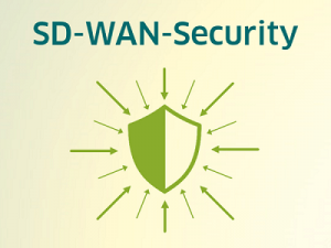 Was ist SD-WAN-Security?
